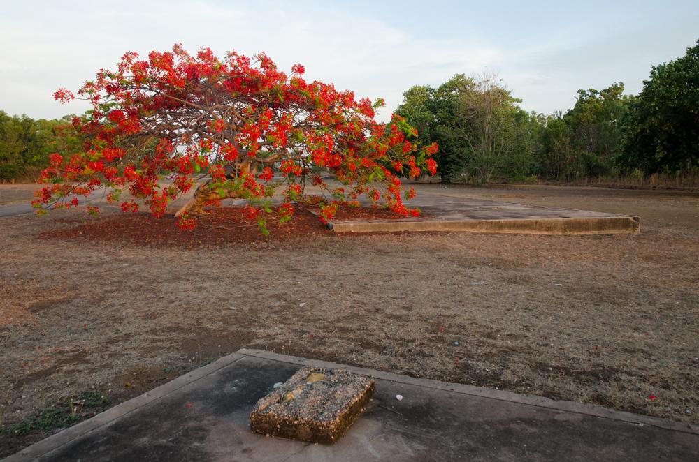 Cottage foundation, Retta Dixon Home site (1946 – 1982), Karu Park, Bagot, 5 November 2014