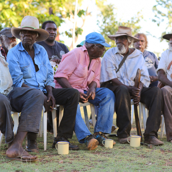 Stephen Long Jangala, Paddy Doolak Jangari, Peanut Pontiari Bernard Japalyi, Thomas Monkey Yikapayi Jungurra, Ronnie Wavehill Wirrpngayarri Jangala, Wajarra song project, Karungkarni Art and Culture Aboriginal Corporation, 20 October 2015