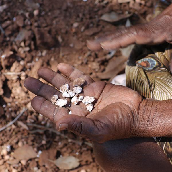 Violet Wadrill Nanaku collecting ochre, near Kalkaringi, 20 October 2015