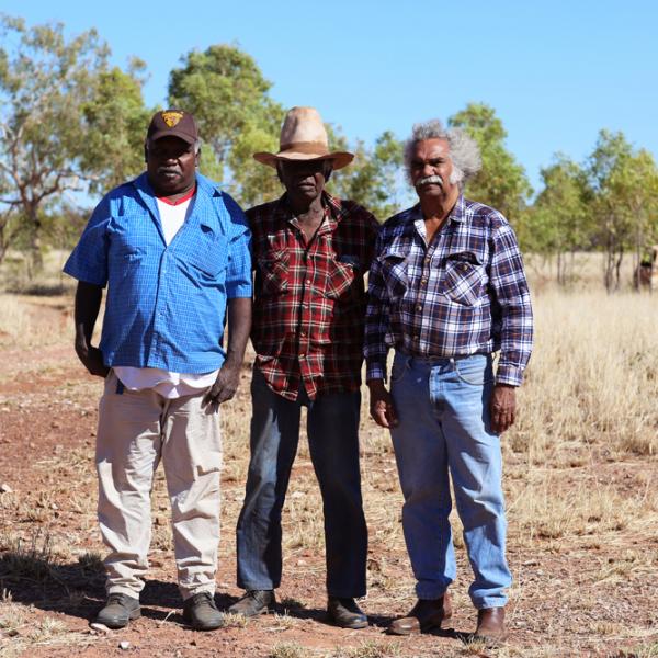 Michael Paddy Japarta, Paddy Doolak Jangari, Maurie Ryan Japarta, Wave Hill Walk-Off Track/Old Daguragu Road, near Junani (Gordy Creek), 8 July 2015