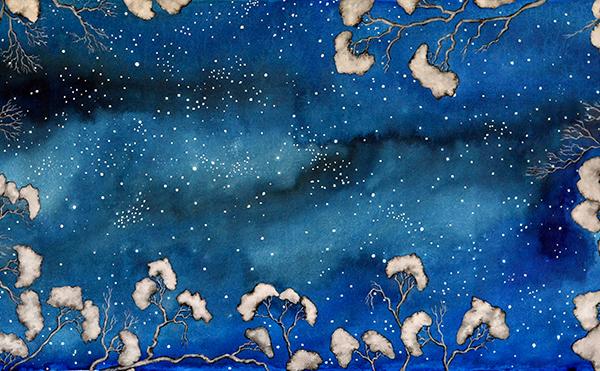 Night Sky Florence