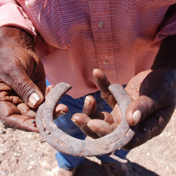 Peanut Pontiari Bernard Japalyi (Bilinara people) with old horseshoe, Killing Yards, Jinparrak (Old Wave Hill Station), 28 August 2014