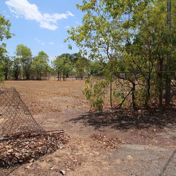 Pine Creek Aboriginal Boys Home site, (1931 – 1933), Pine Creek