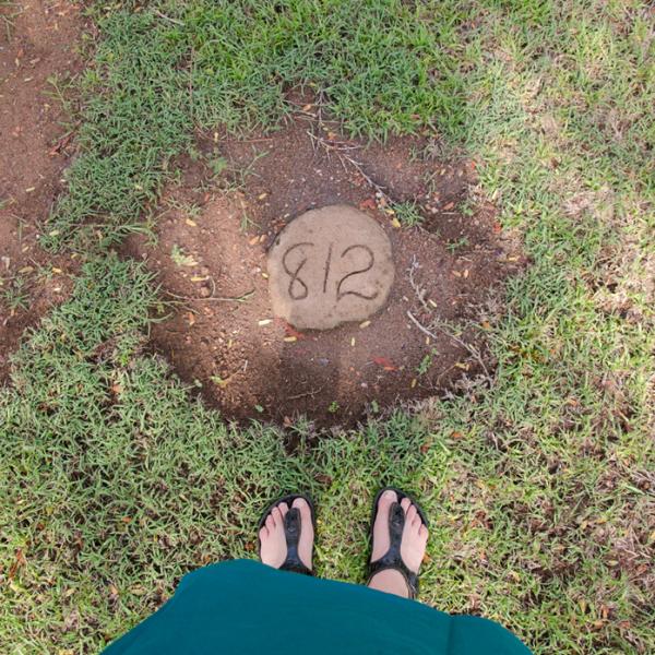 Self-portrait with grandfather's plot, 6 November 2014