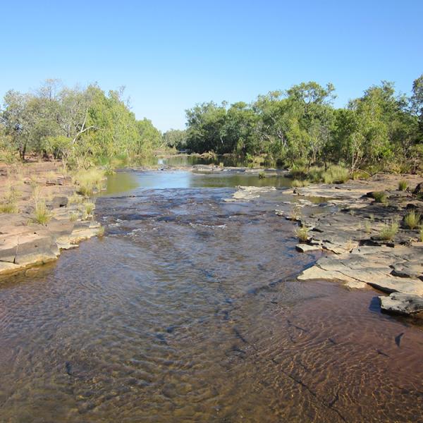 Wattie Creek, 16 April 2012