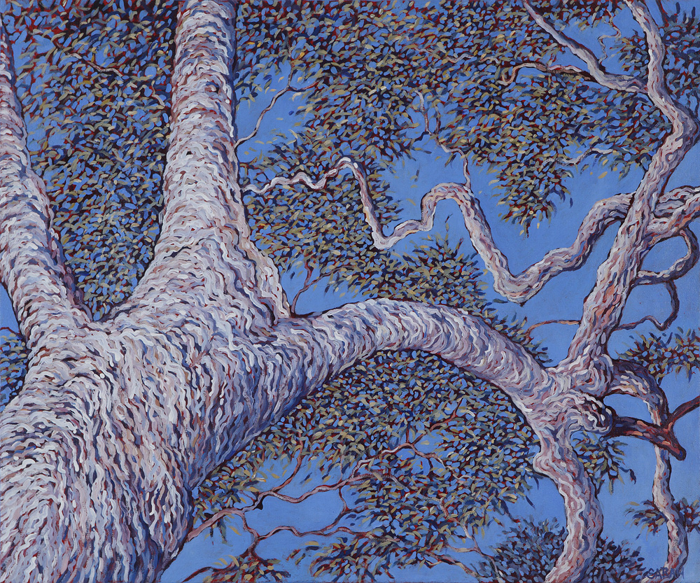 Tree 2 by Sarah Brown
