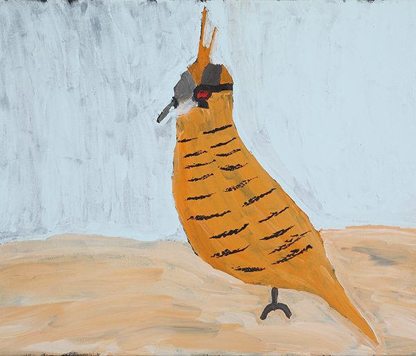 Spinifex Pigeon (19-653)