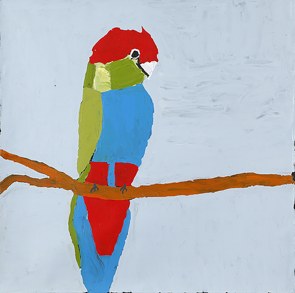 Red Capped Parrot (20-951)