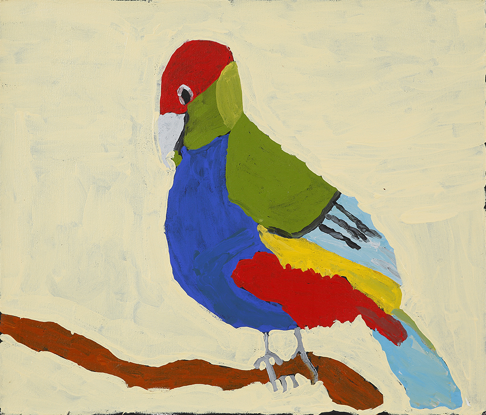 Red Capped Parrot (20-959)