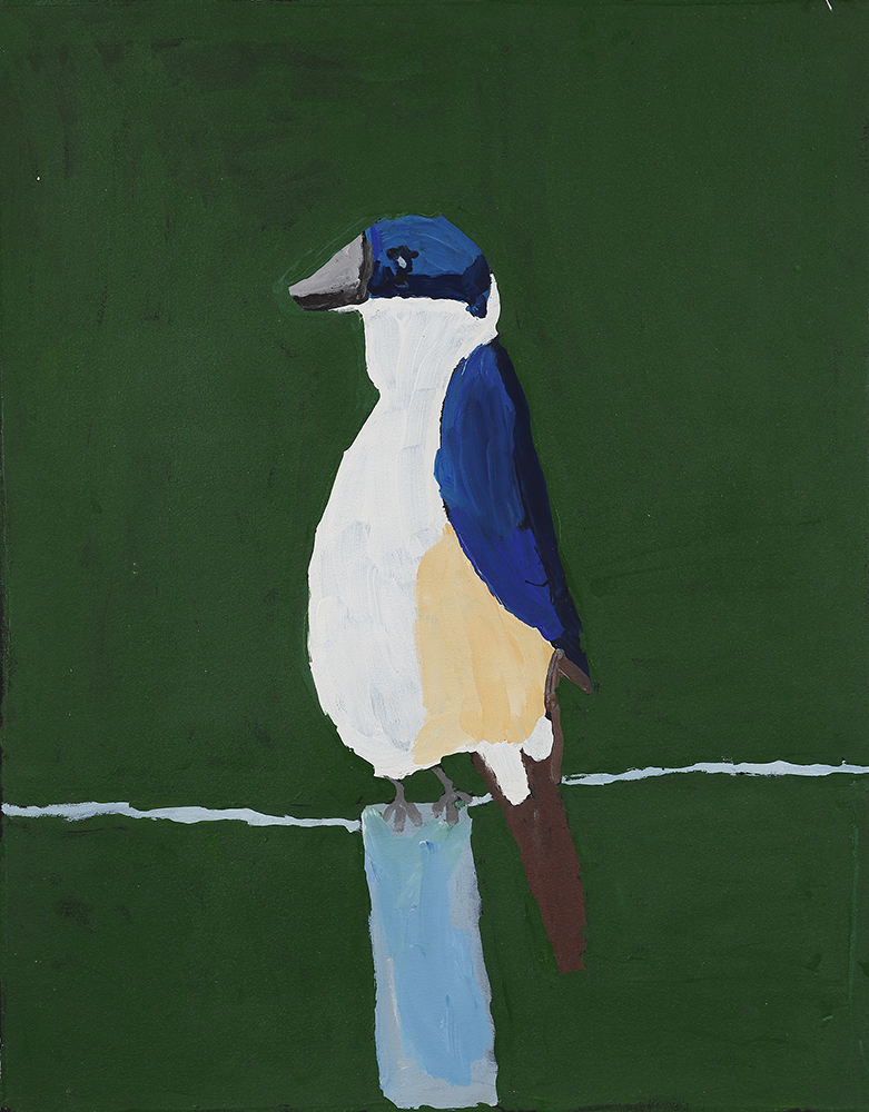 Sacred Kingfisher (20-830)