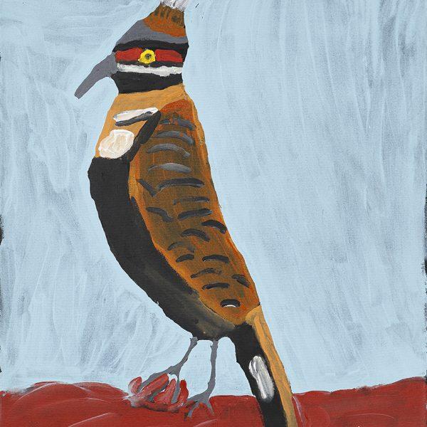 Tall Rock Pigeon (20-402)