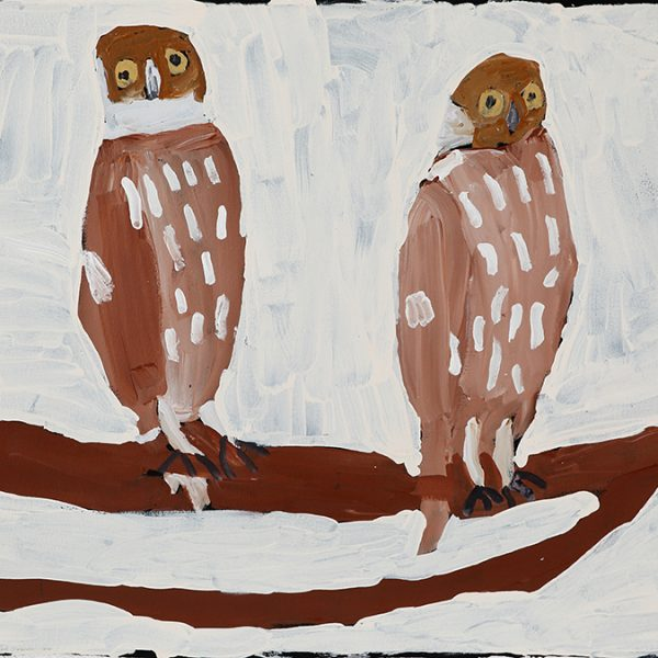 Two Brown Owls (20-543)