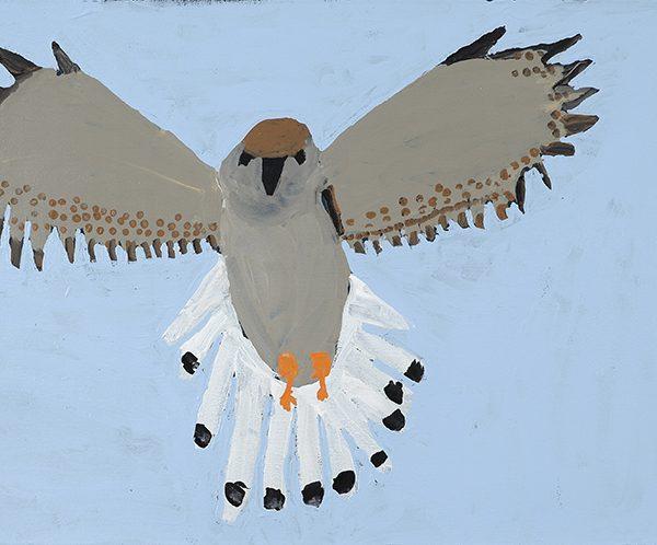 Kit Hawk (20-902)
