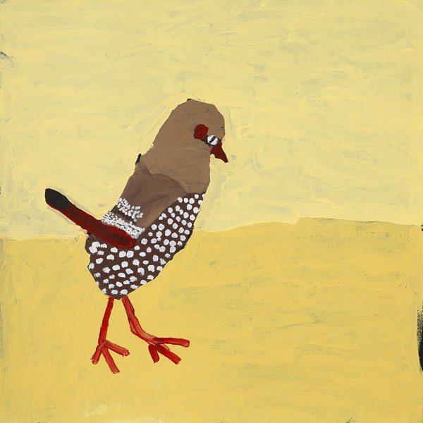 Zebra Finch (20-965)