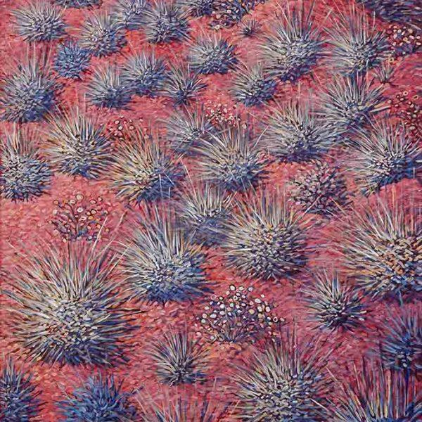 Western desert wildflowers